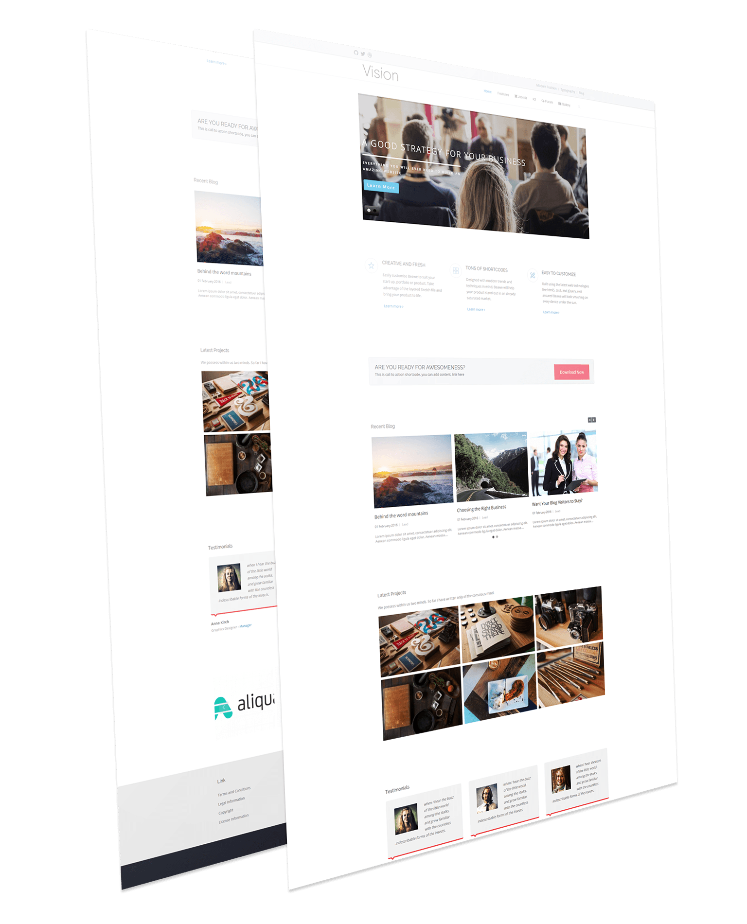 Responsive Business Joomla Template - Vision