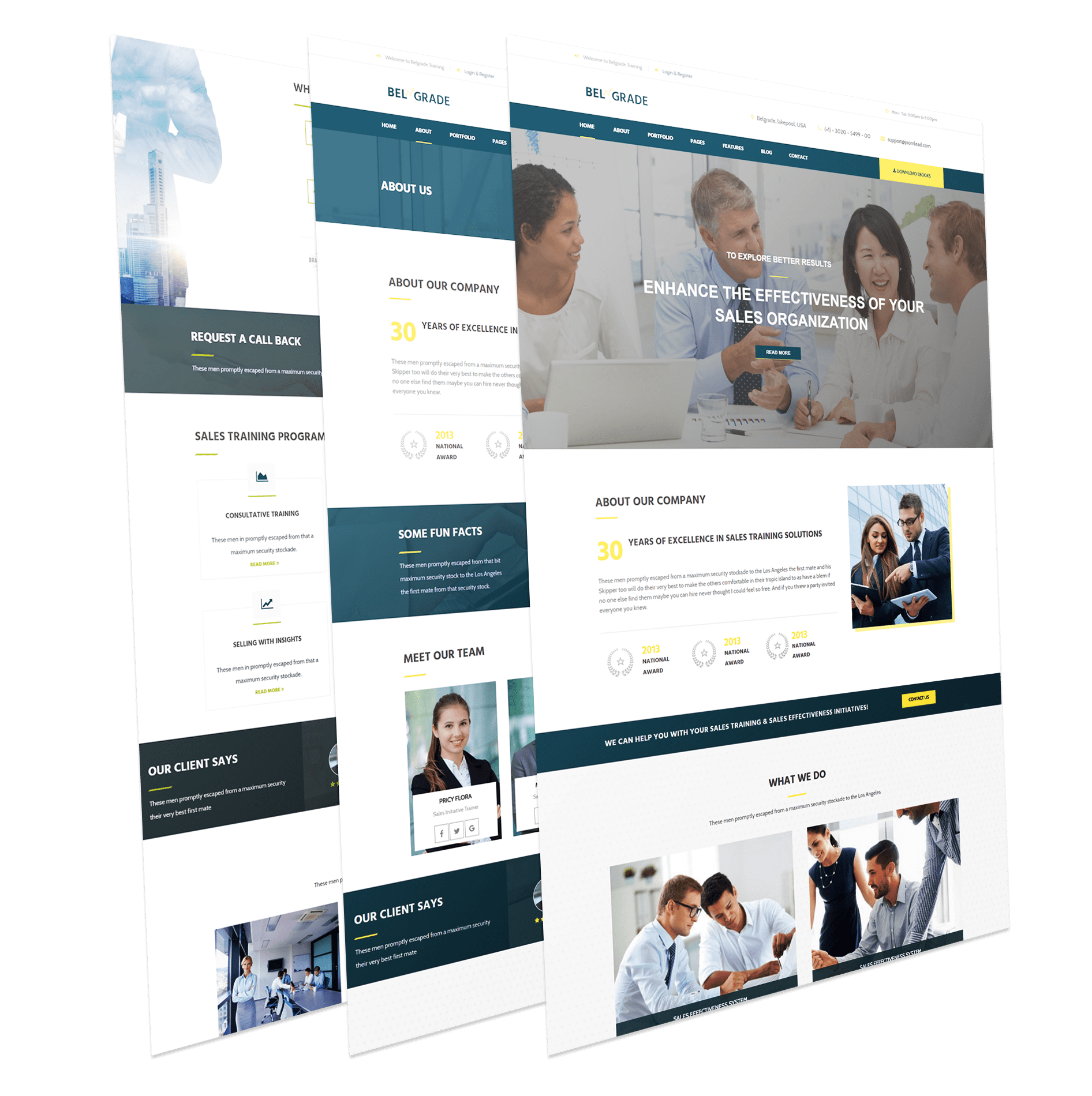 Consulting Joomla Template